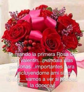 rosas-san-valentin
